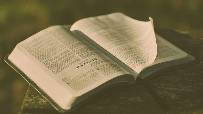 La poesía bíblica – Parte 2