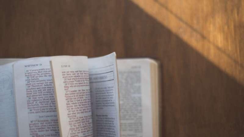 Los evangelios—Parte 1