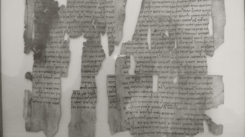EL texto del Nuevo Testamento Parte I