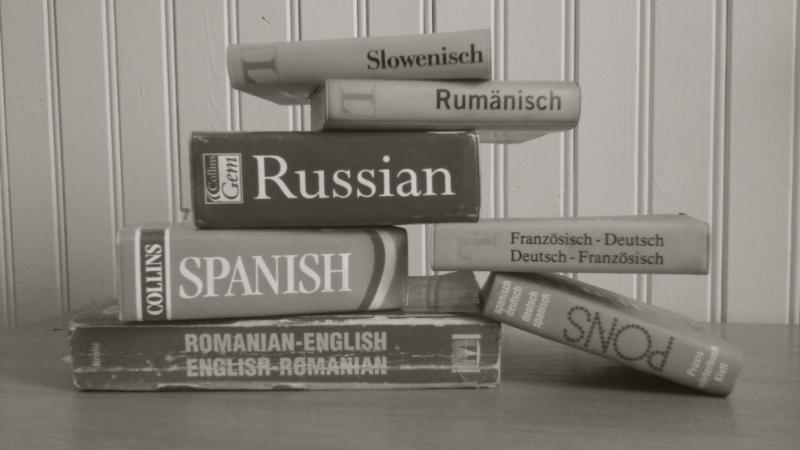 El traductor como lingüista Parte I