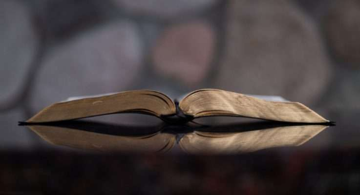 Forma y significado del texto Parte 2