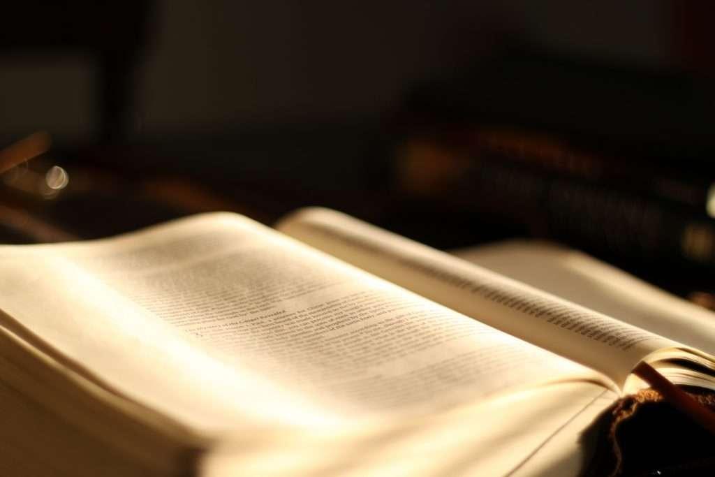 Forma y significado del texto Parte II