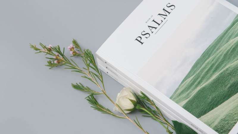 El atractivo del libro de los Salmos