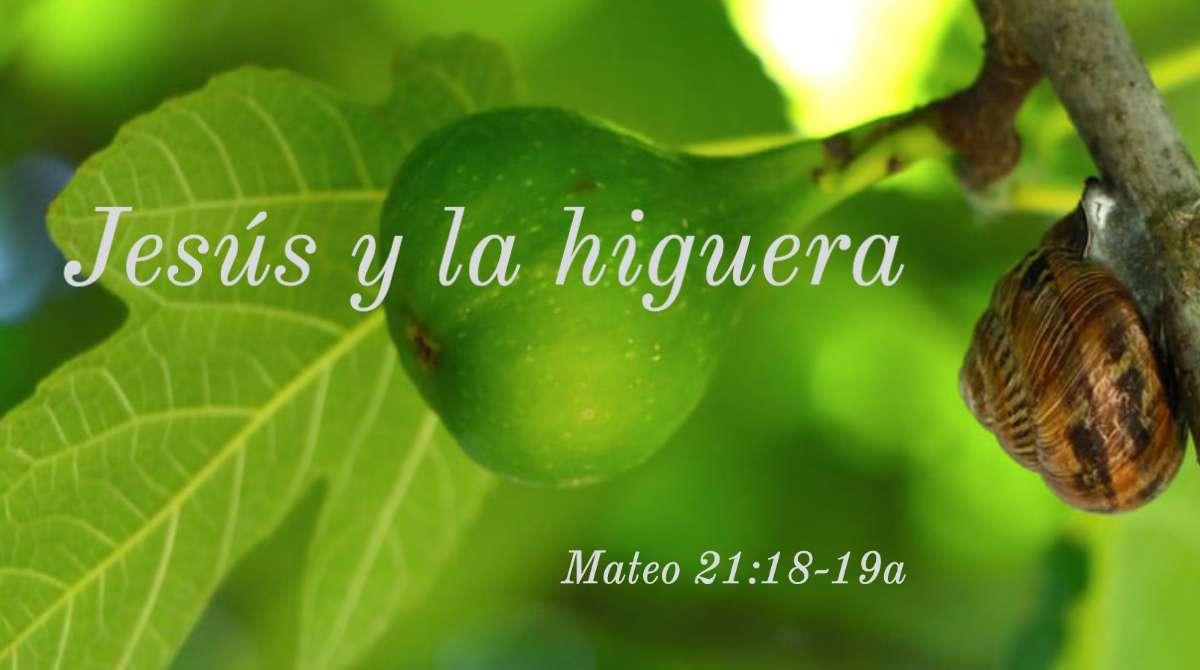 La última semana de Jesús: Lunes Santo