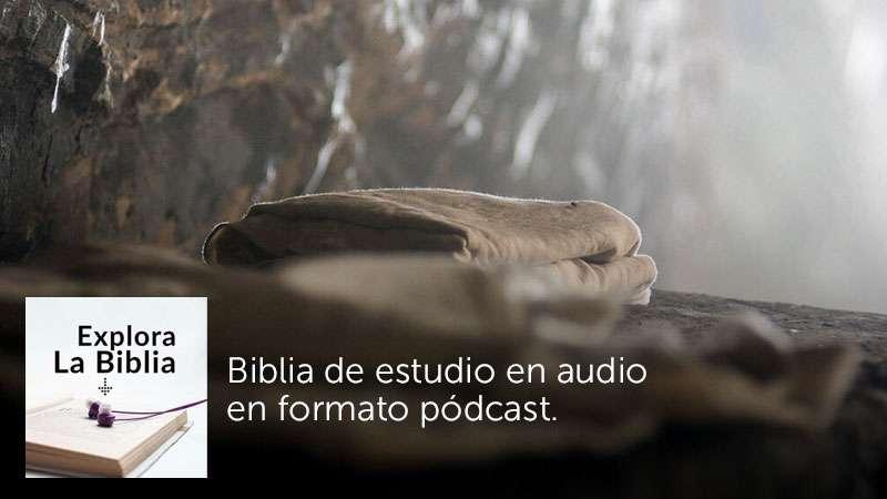 La resurrección, el evento central de la fe cristiana - Mateo 28